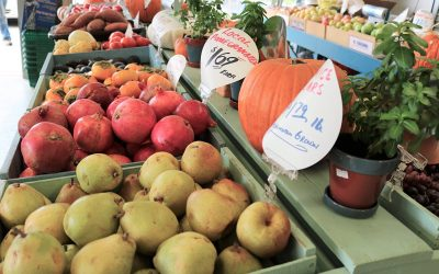 Eat the Season: Pears, Pomegranates & Persimmons